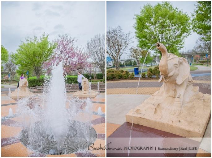 BraskaJennea Photography - Samantha & Marty - Chattanooga, TN Photographer_0046.jpg