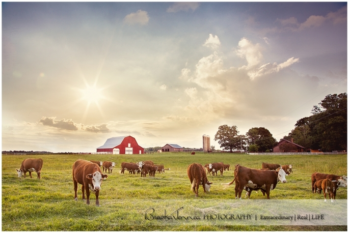 BraskaJennea Photography - Parker Family Beef - Nashville Commercial Photographer_0001.jpg