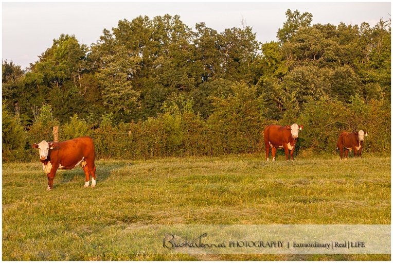 BraskaJennea Photography - Parker Family Beef - Nashville Commercial Photographer_0016.jpg