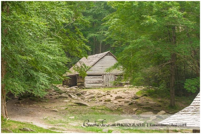 BraskaJennea Photography -Almeida Family - Gatlinburg, TN Photographer_0039.jpg