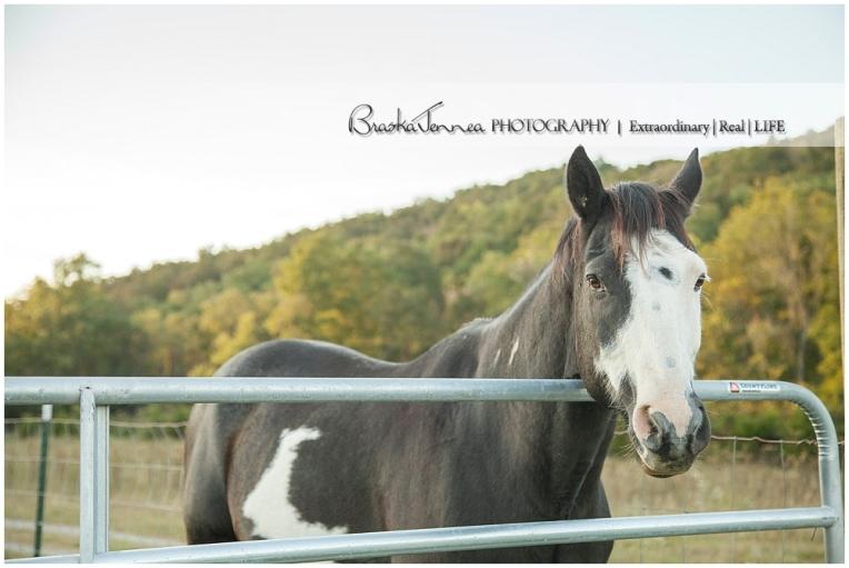 A Nashville Equine Engagement - Caitlyn + Brandon- BraskaJennea Photography_0049.jpg