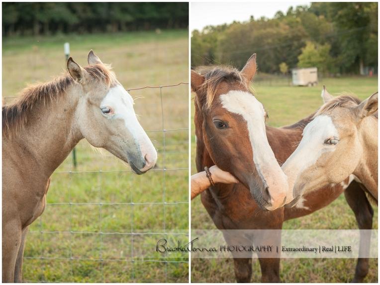 A Nashville Equine Engagement - Caitlyn + Brandon- BraskaJennea Photography_0063.jpg