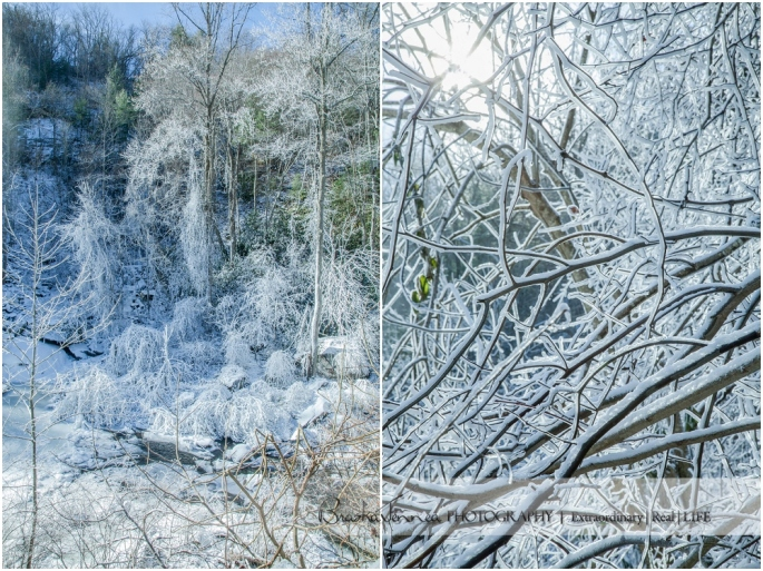 Frozen Bald River Falls - Fine Art Nature - BraskaJennea Photography_0005.jpg