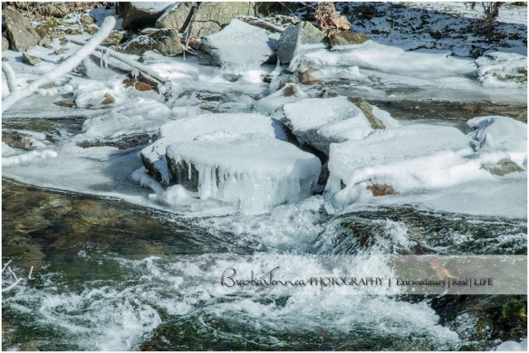 Frozen Bald River Falls - Fine Art Nature - BraskaJennea Photography_0013.jpg