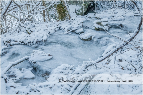 Frozen Bald River Falls - Fine Art Nature - BraskaJennea Photography_0038.jpg