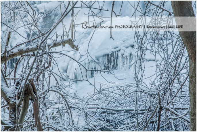 Frozen Bald River Falls - Fine Art Nature - BraskaJennea Photography_0039.jpg