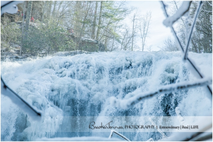 Frozen Bald River Falls - Fine Art Nature - BraskaJennea Photography_0044.jpg