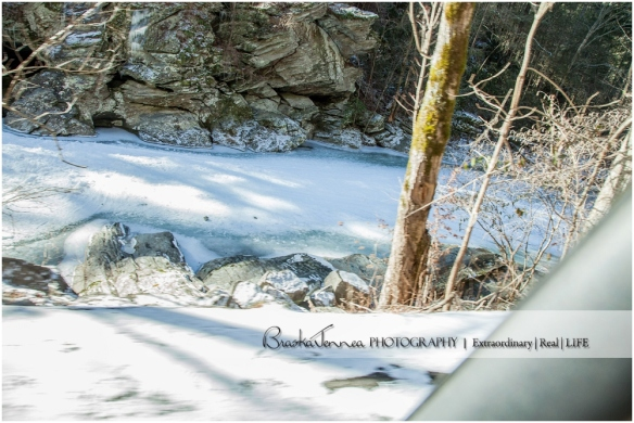 Frozen Bald River Falls - Fine Art Nature - BraskaJennea Photography_0052.jpg